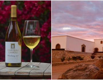 Reconocen en España a vino de Ensenada como el mejor de México
