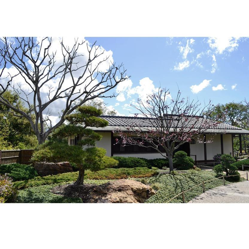 Jardín Japonés (Facebook )