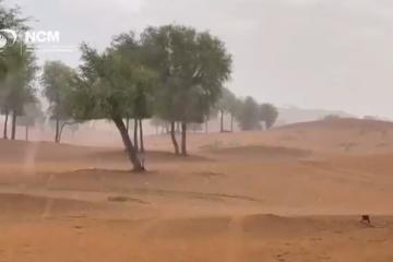 Crean lluvia torrencial artificial en Emiratos Árabes Unidos