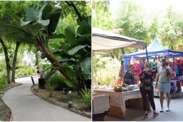 Cecut tendrá bazar en su Jardín Botánico este fin de semana