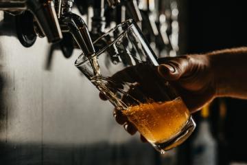 SeaWorld San Diego realizará Festival de Cerveza Artesanal en agosto