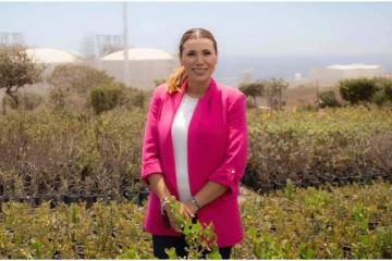 Baja California Elected Governor, Marina del Pilar, appoints...