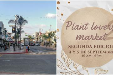 4 events you will love in Tijuana this weekend