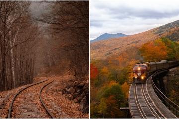 ¿Quieres viajar en tren por EEUU? Amtrak ofrece 50% de descuento
