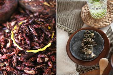 Los 5 ingredientes más inusuales usados en platillos mexicanos