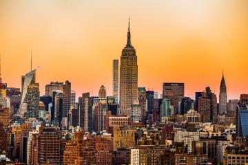 Mueren cientos de aves migratorias en New York esta semana