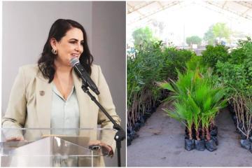 5 acciones de alcaldesa Karla Ruiz para mejorar medio el ambiente...