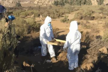 Lanzan micrositio para personas desaparecidas en Baja California