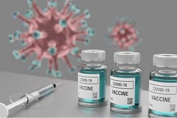 Anticuerpos producidos por vacunas ARNm caerían drásticamente...