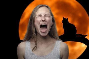 Películas de terror recomendadas para disfrutar este Halloween
