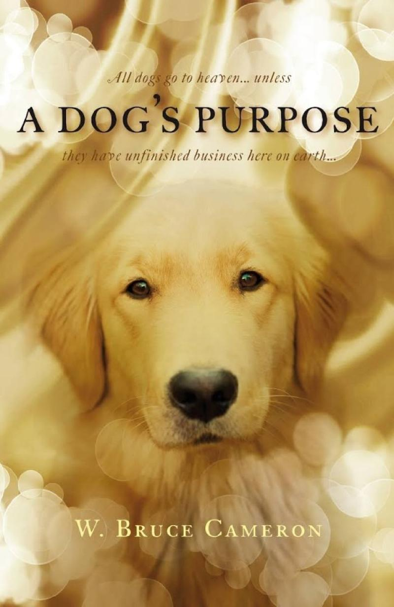 A Dogs Purpose (2016)