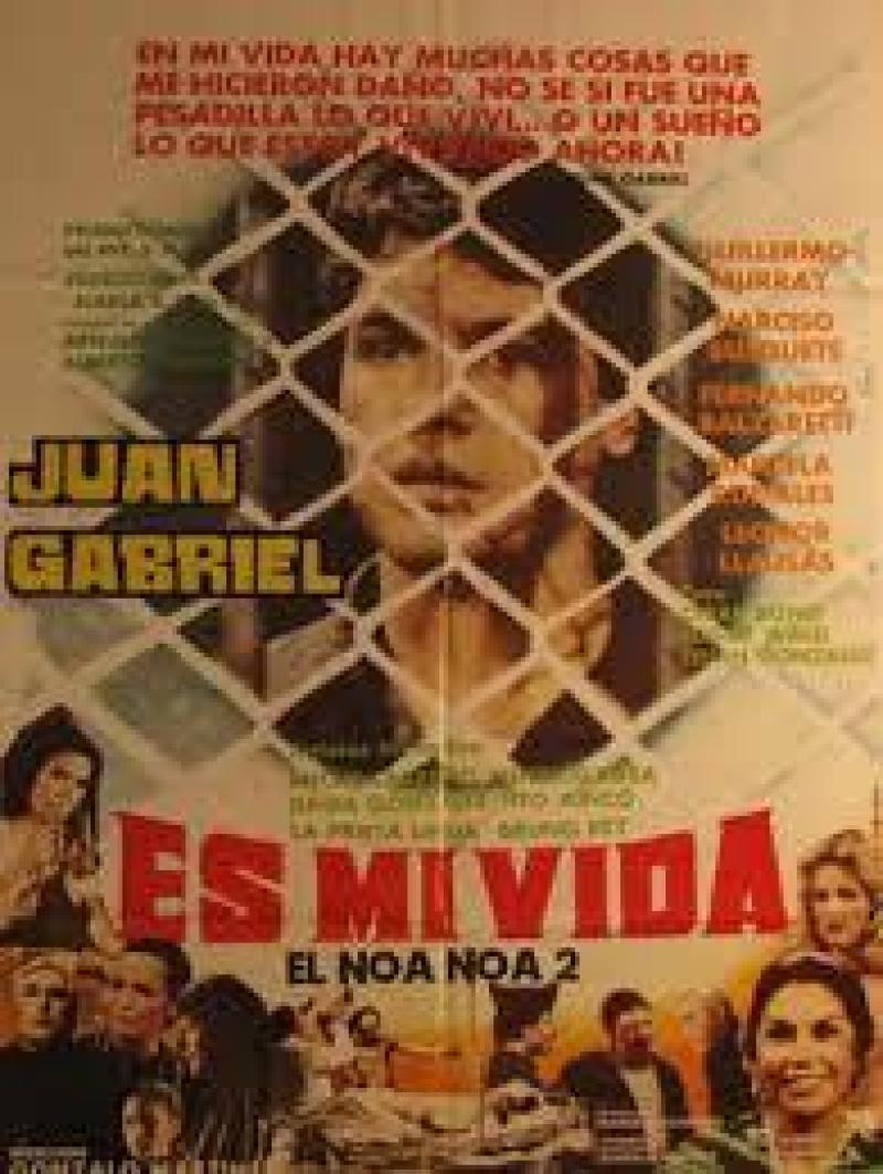 Es Mi Vida (1982)
