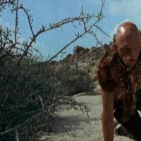 La colina de los ojos malditos (1977)