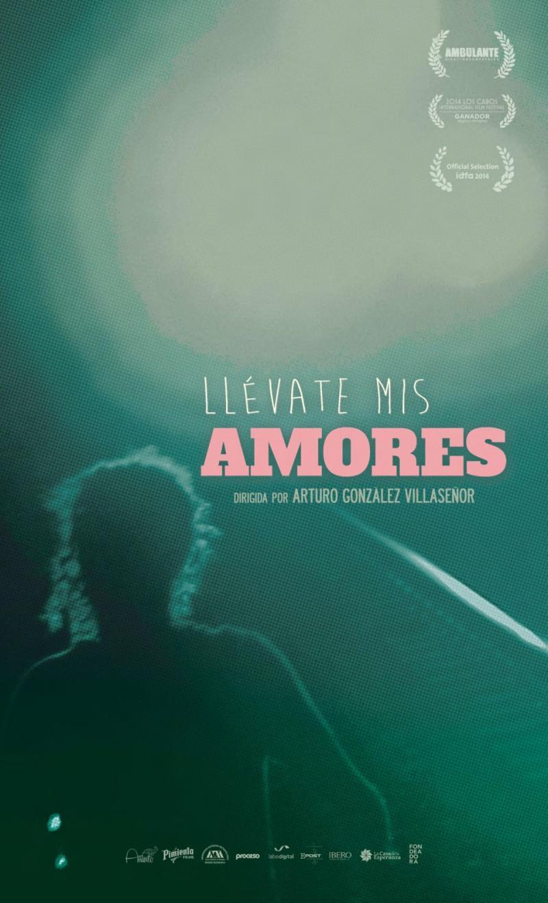 Llévate mis amores (2016)
