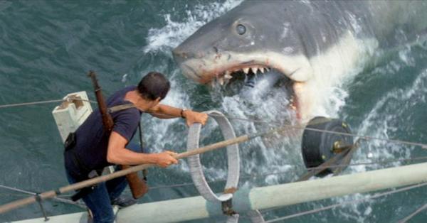 Imagen de Tiburón