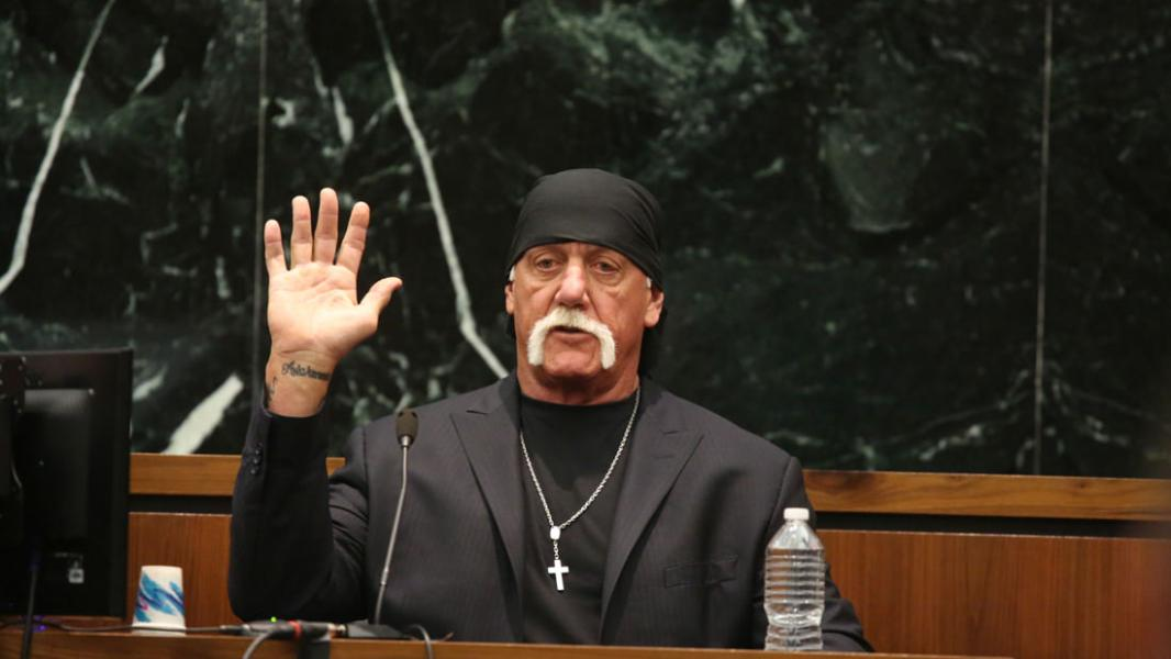 Nobody Speak: Hulk Hogan, Gawker and Trials of a Free Press (2017)