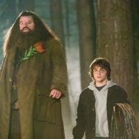 © 2005 Warner Bros. Ent. Harry Potter Publishing Rights J.K.R.