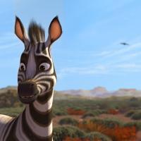 Triggerfish Animation