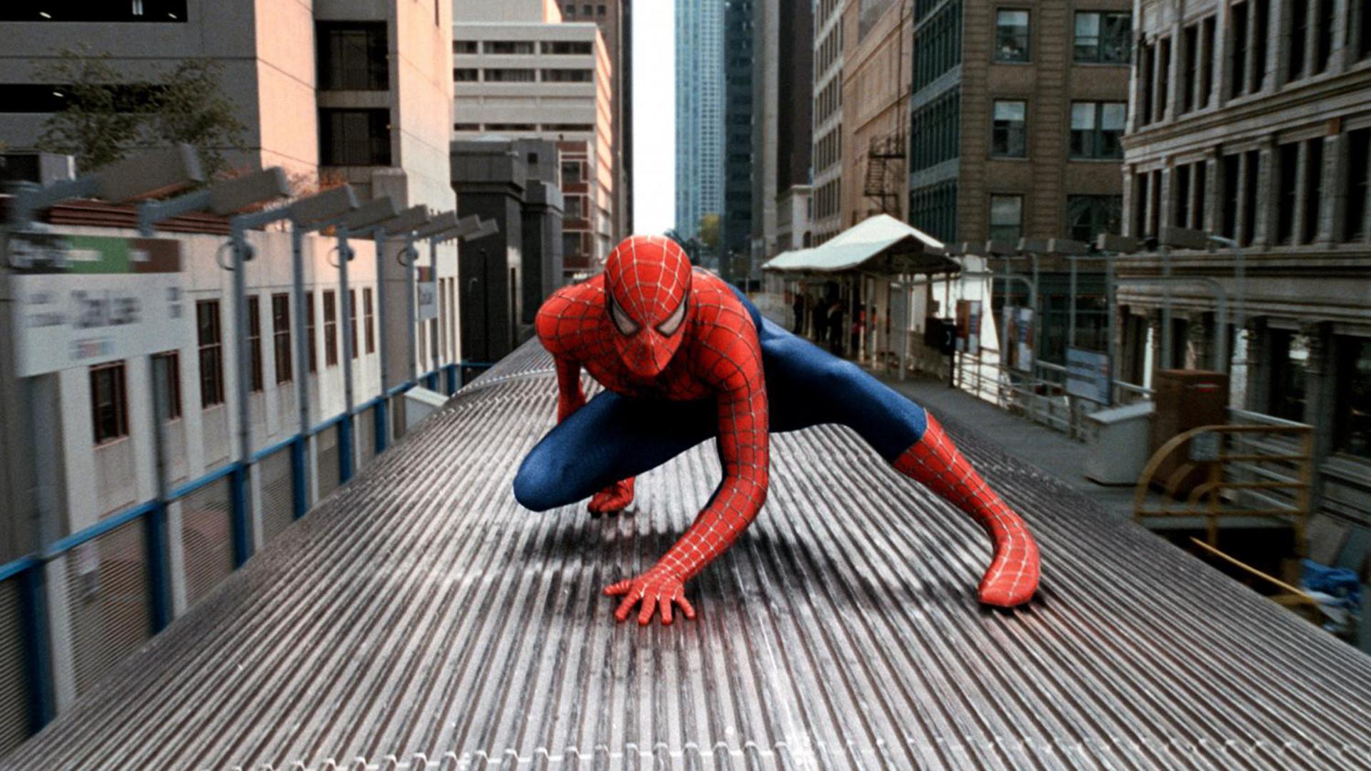 Imagen de El Hombre Araña 2