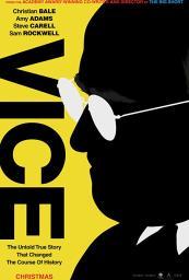 El Vicepresidente: Más Allá del Poder