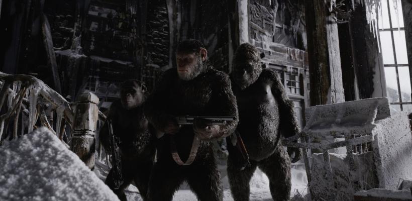 El Planeta de los Simios: La Guerra: top de críticas, reseñas y calificaciones