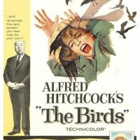 Universal Pictures / Alfred J. Hitchcock Productions