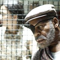 Danny Glover in Blindness (2008)