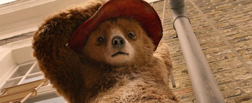 Paddington 2 - Tráiler Internacional