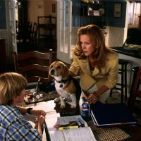 Elizabeth Perkins in Cats & Dogs (2001)