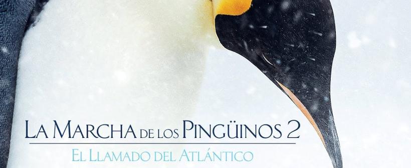La Marcha de los Pingüinos 2 - El Llamado del Atlántico  De Disney Nature - Tráiler oficial