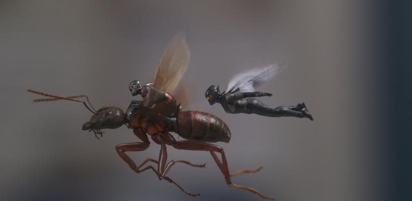 Ant-Man and the Wasp supera la recaudación en taquilla de Ant-Man gracias a China