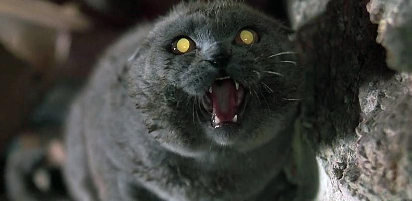 Cementerio de Mascotas, de Mary Lambert, ¿qué dijo la crítica en su estreno?