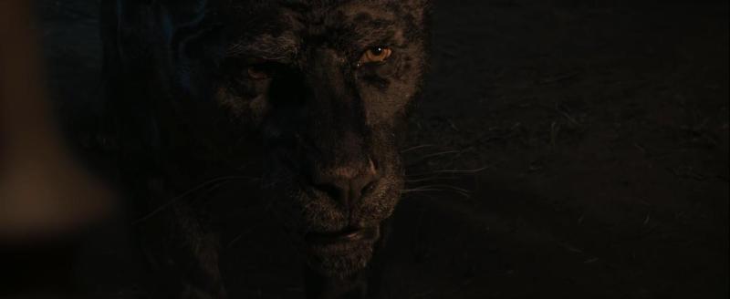 Mowgli: Relatos del Libro de la Selva -© 2018 Warner Bros.