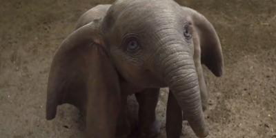 Dumbo | Top de críticas, reseñas y calificaciones