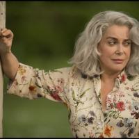 La Última Locura de la Señora Darling 2018