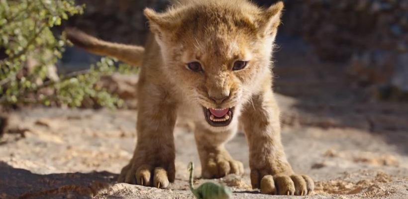 El Rey León recibe críticas por contener maltrato animal
