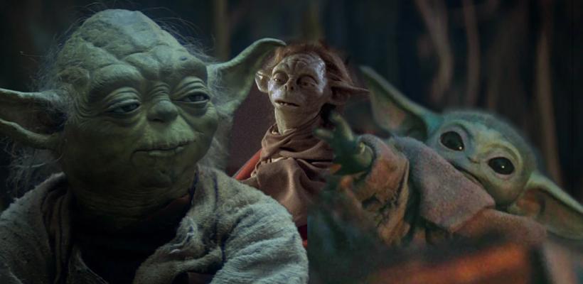Star Wars: Toda la información que hay sobre la especie de Yoda