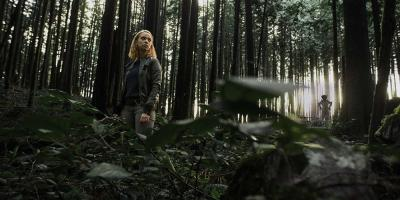 Espíritus en el Bosque: Top de críticas, reseñas y calificaciones