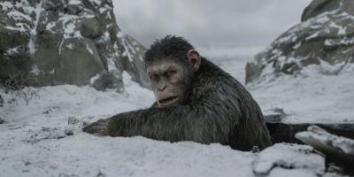 Fans de El Planeta de los Simios reaccionan furiosos ante la posibilidad de un reboot en Disney