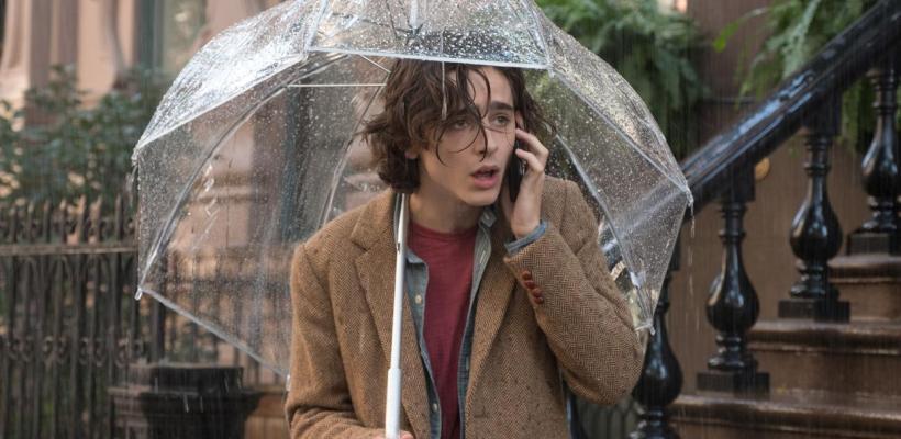 Woody Allen asegura que Timothée Chalamet lo acusó públicamente para ganar un Óscar