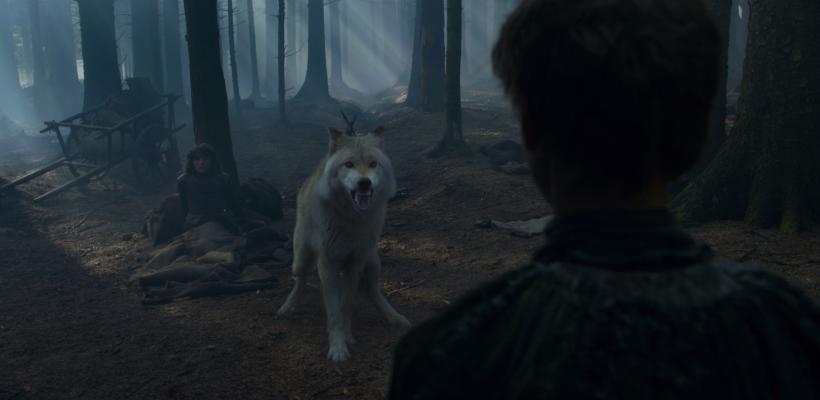 Game of Thrones: Perro que interpretó al lobo huargo de Bran murió de cáncer
