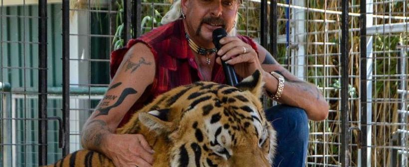 Tiger King - Tráiler