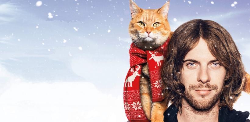 Murió Bob, el gato que fue inspiración de libros y la película A Street Cat Named Bob