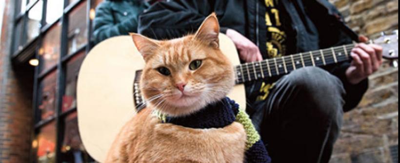 A Street Cat Named Bob (2016) | Tráiler oficial