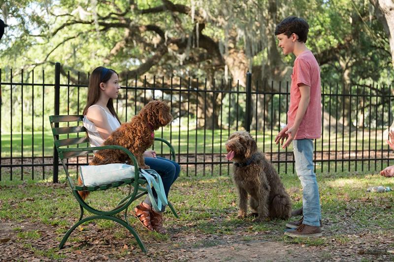 Una Mente Canina (2020)