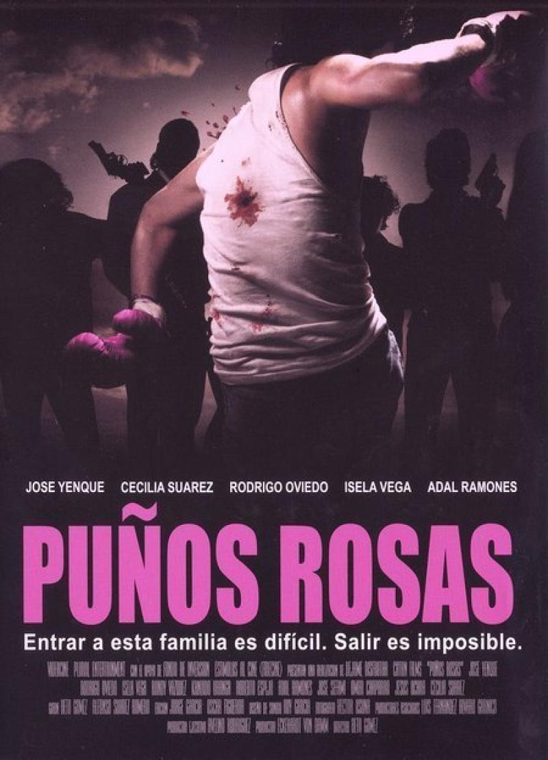 Póster oficial de Puños Rosas (2005)