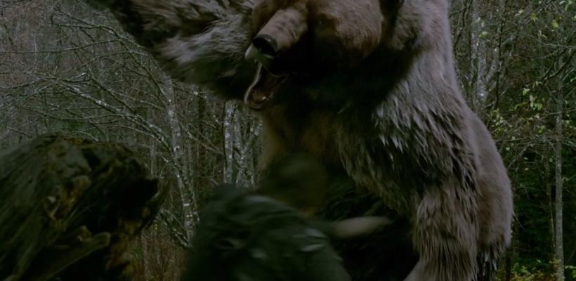 Ve el absurdo trailer de Into The Grizzly Maze