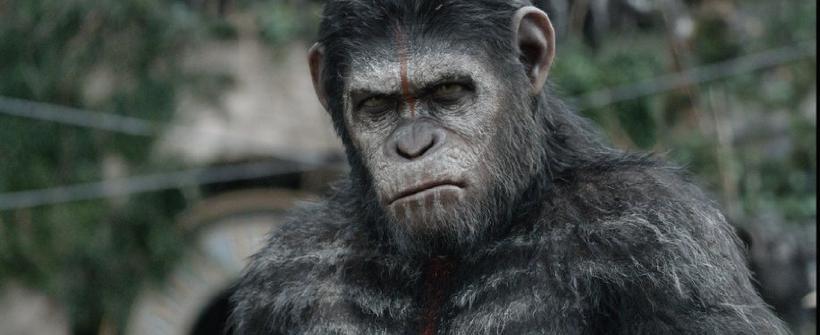 El Planeta de los Simios: Confrontación - Trailer oficial