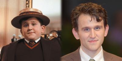 Harry Melling: dejar de ser reconocido como Dudley, de Harry Potter, fue lo mejor para mi carrera