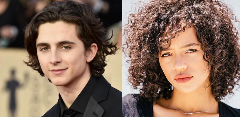 Timothée Chalamet y Taylor Russell protagonizarían la nueva película de Luca Guadagnino